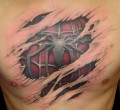 Animale - Tatuaj de Spiderman
